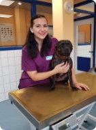 Team_Tierarztpraxis_Jale_Demir_Dr_Annette_Fuchs