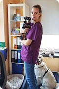 Tierarzt_Praxis_Mannheim_Dr_Fuchs_Dr_Spindler_MA_Beste